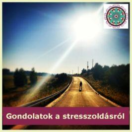 Vendég vélemény – gondolatok a kineziológiai stresszoldásról