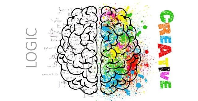 A tanulás fokozatai – az integrált agyműködés