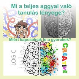 Miért kapcsolnak le a gyerekek? Mi a teljes aggyal való tanulás?