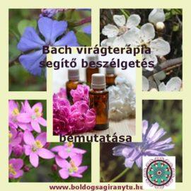 Bach virágterápia – segítő beszélgetés bemutatása
