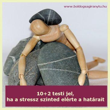 10+2 testi jel, hogy a stressz szinted elérte a határait
